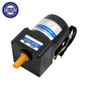 25W Ac Induction Motor