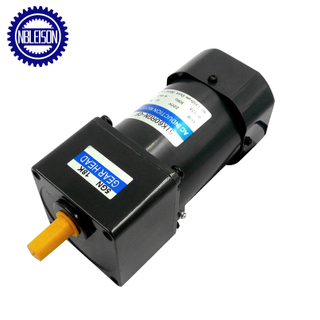 60W Ac Induction Motor