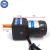 6W Ac Induction Motor